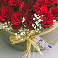 03-Rose-Box-40